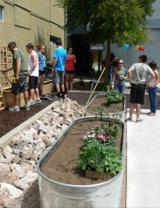 School of Sustainability Residential Community raised gardens